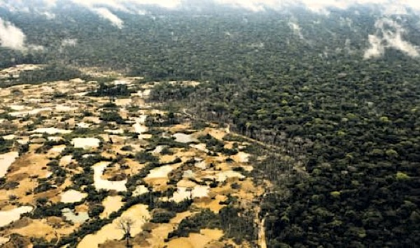 US grants Peru $1m for Amazon clean-up due to illegal mining legacy
