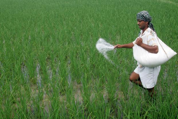 India's appetite for fertilizers beats expectations — Phosagro