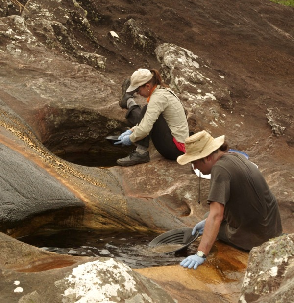 These bacteria can help you find rich platinum deposits